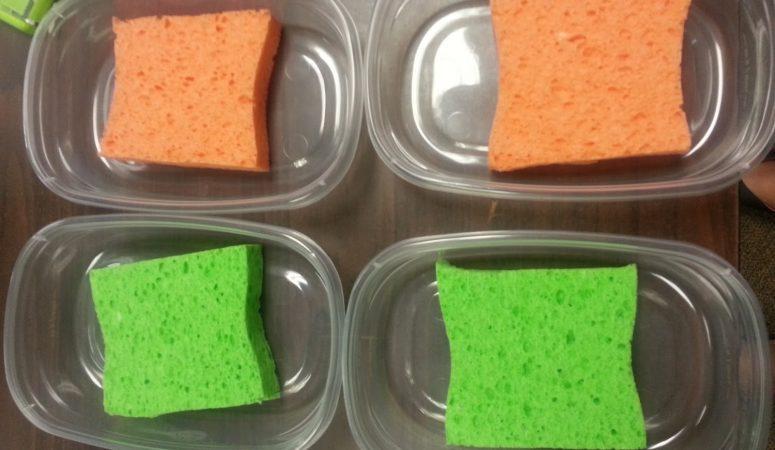 The Glue Sponge!!!