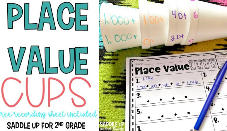 Place Value Cups