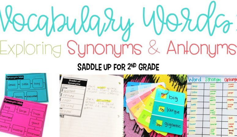 Vocabulary Words: Exploring Synonyms & Antonyms